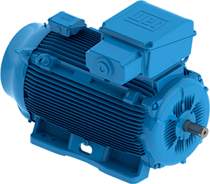 W22 line high voltage motors