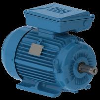 W22 Single-Phase Electric Motor