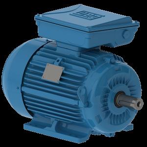 WEG W22 Cast Iron Single Phase Motor