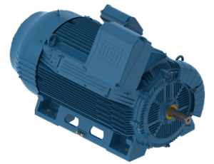 WEG W50 Medium/High Voltage Motors