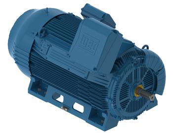 WEG W50 Medium/High Voltage Motors
